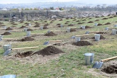 Massive tree planting in Yerevan, Armenia - Photolure News Agency